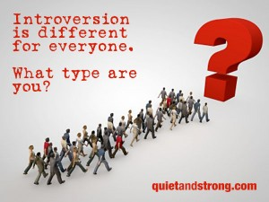 Introversion is different for everyone. What type are you?