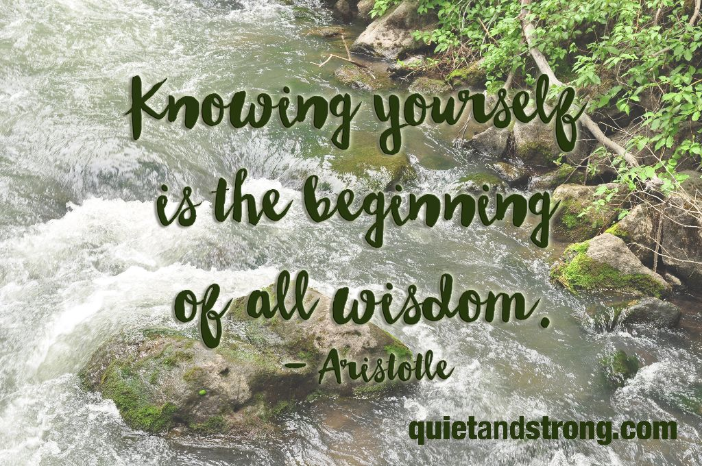 knowing-yourself-is-the-beginning-of-wisdom
